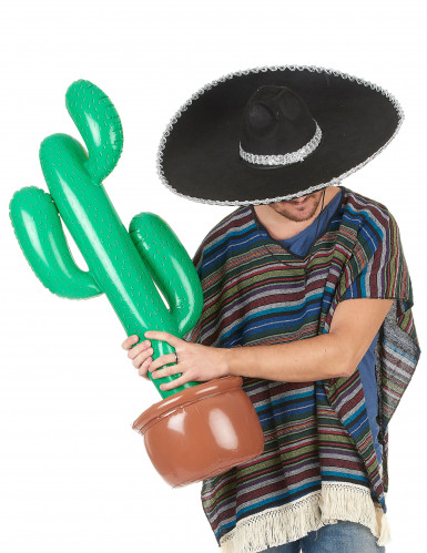 Cactus gonfiabile-1