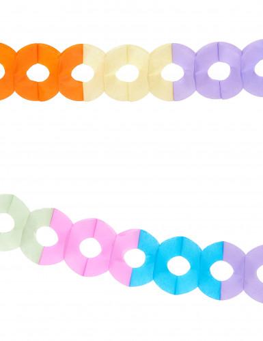 Ghirlande di carta colorata 2,5 metri-1