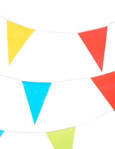 Ghirlanda gagliardetti colorati 10 metri-1