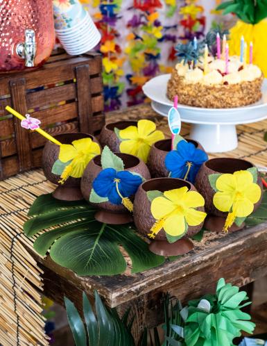 Coppa Hawaii noce di cocco-1