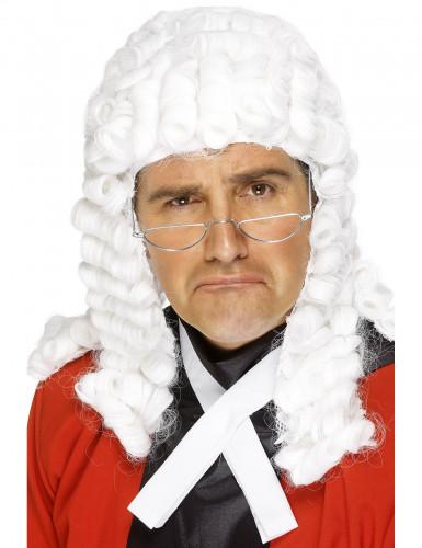 Parrucca da giudice deluxe uomo