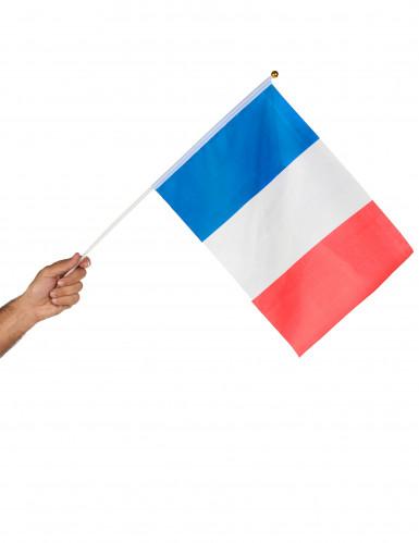 Bandiera da tifoso Francia-1
