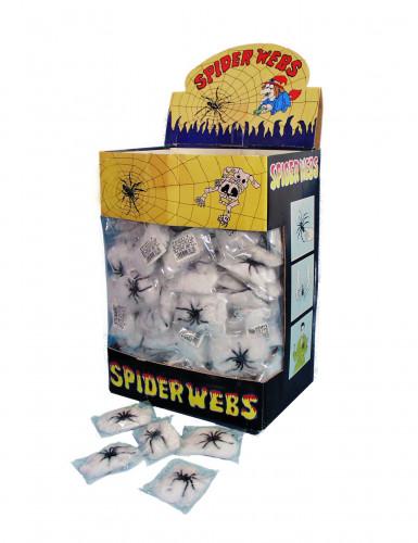 Ragno con ragnatela bianca - Halloween-1