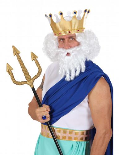 Parrucca bianca dio dell'olimpo uomo