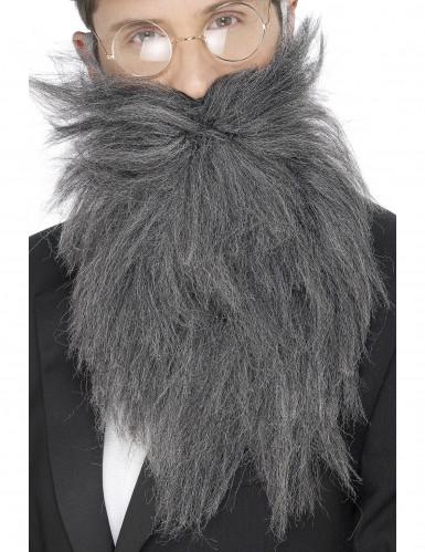 Lunga barba grigia uomo