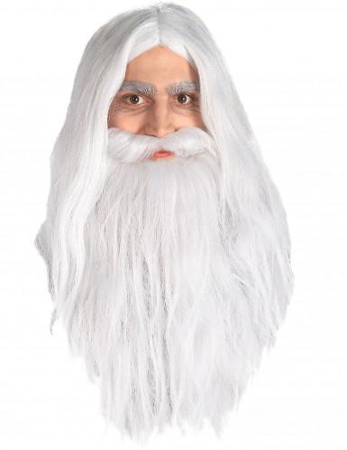 Parrucca e barba Gandalf Signore degli anelli™ uomo