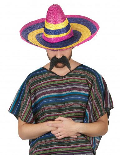 Sombrero multicolore adulto-1