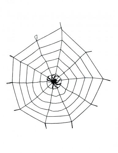 Ragnatela elastica con ragno