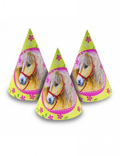 6 cappelli cavalli