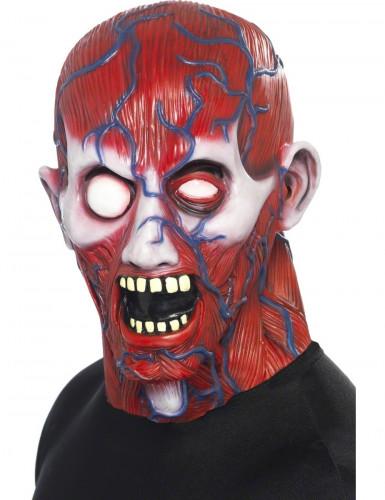 Maschera integrale anatomia adulti per Halloween