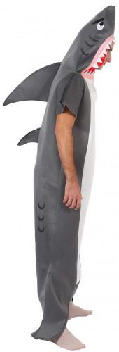Costume squalo-1