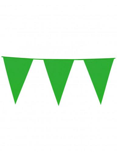 Ghirlanda bandiere verde