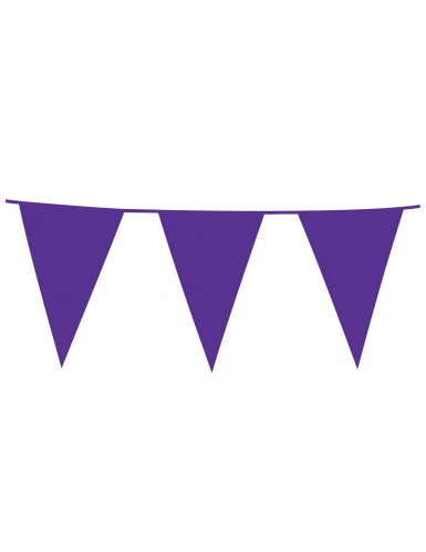 Ghirlanda bandiere viola