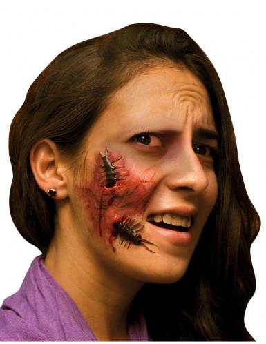 Finta ferita viso adulto Halloween