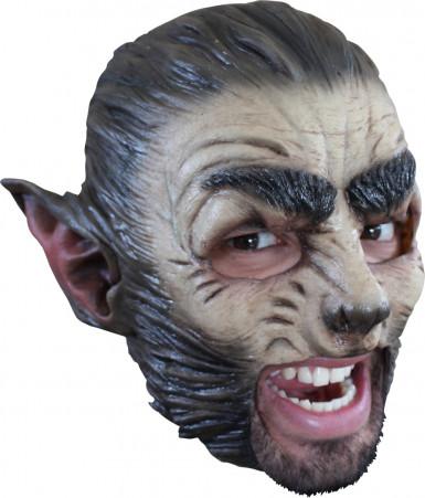 Maschera lupo adulto Halloween