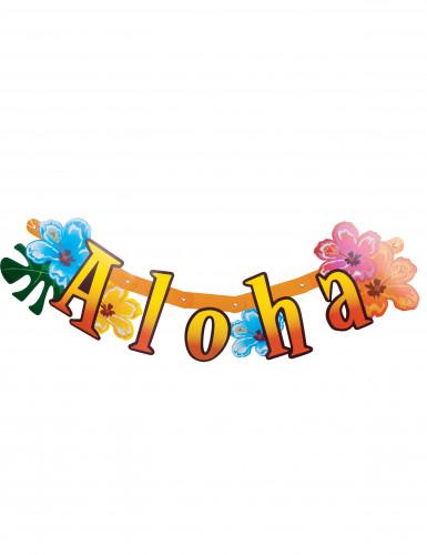 Banner articolato Aloha Hawaii