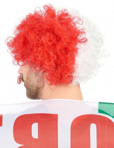 Parrucca afro/clown Italia-1