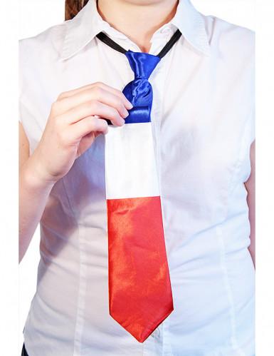 Cravatta Francia-1