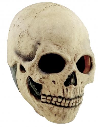 Maschera teschio adulto halloween