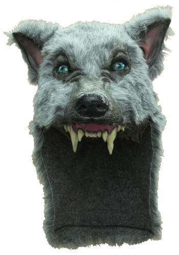 Maschera lupo grigio adulto