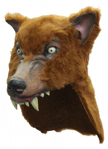 Maschera lupo marrone adulto