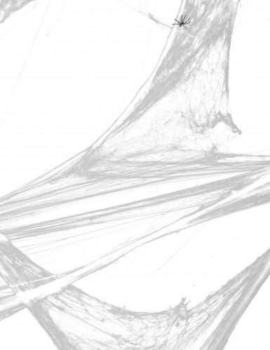 Decorazione tela di ragno bianca con ragni Halloween-1