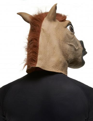 Maschera da cavallo per adulti-1