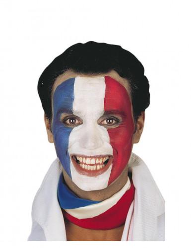 Truccco tifoso Francia-1