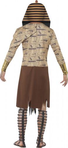Costume faraone zombie Halloween-2