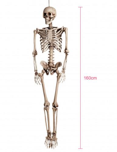 Decorazione da appendere scheletro Halloween-3