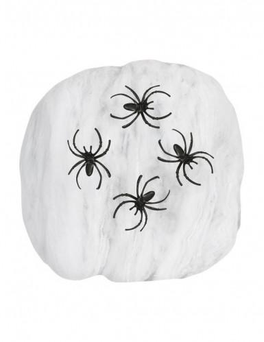 Finta ragnatela bianca con ragni - Halloween-1
