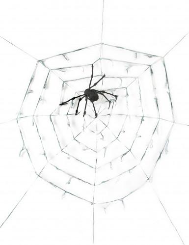 Decorazione di Halloween: ragnatela gigante con ragno