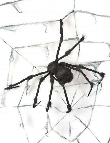 Decorazione di Halloween: ragnatela gigante con ragno-1