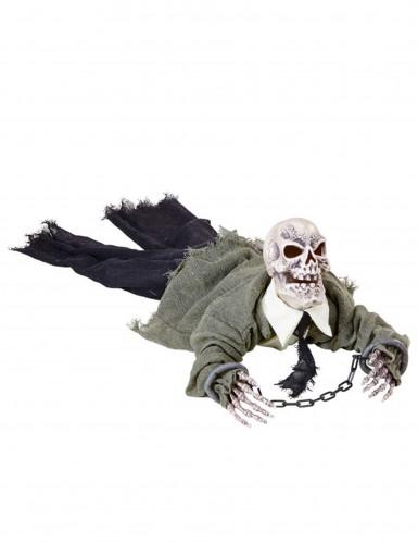 Decorazione scheletro animato, luminoso e sonoro Halloween