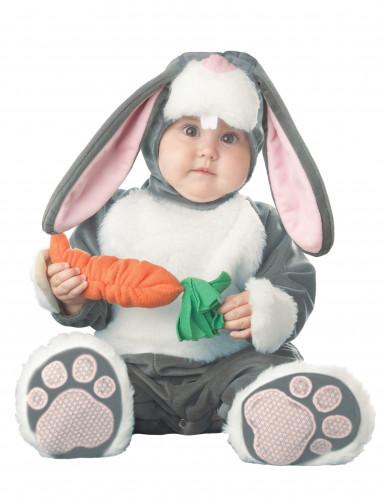 Costume Coniglio per neonato - Premium