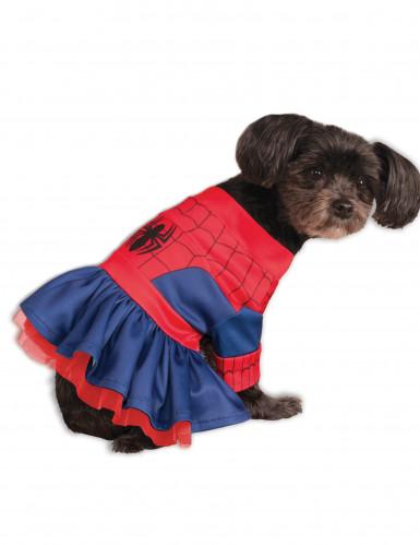 Costume per cani Spidergirl™