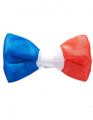 Cravattino papillon Francia