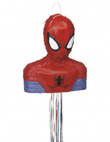 Pentolaccia Spiderman™