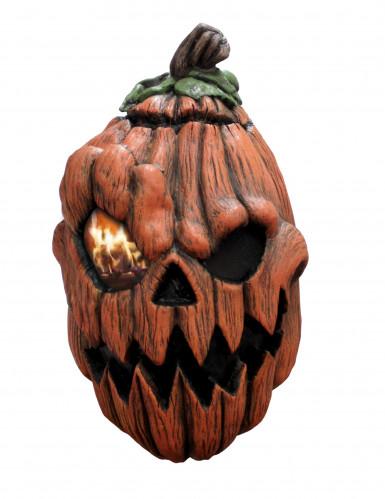 Immagine Zucca Di Halloween 94.Maschera Da Zucca Di Halloween Animata Per Adulto