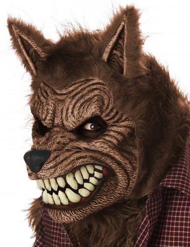 Maschera animata lupo adulta