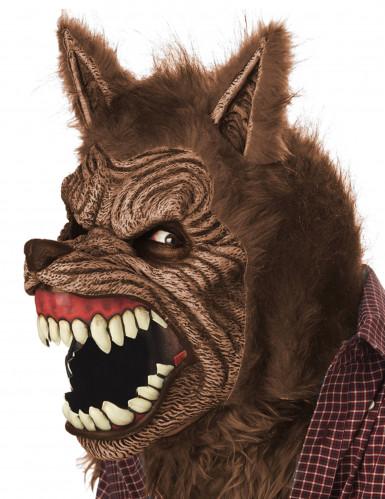Maschera animata lupo adulta-1