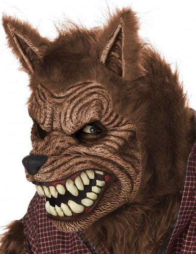 Maschera animata lupo adulta-2