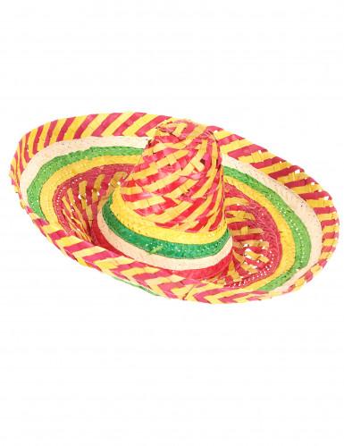 Sombrero messicano tutti i frutti adulto
