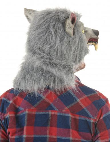 Maschera da lupo mannaro in lattice per adulto-1