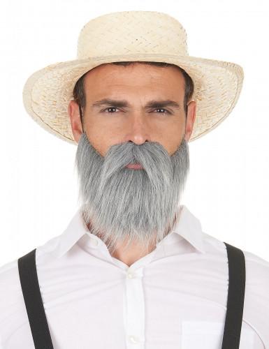 Baffi e barba grigia da adulto