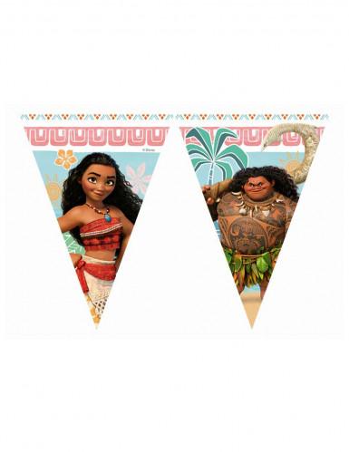 Ghirlanda bandierine Oceania™ 2.3 m