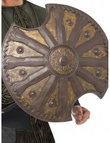 Scudo color bronzo 50 cm