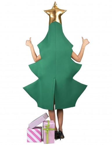 Costume albero di natale 3D per adulto-2