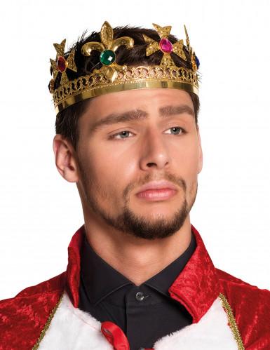 Corona da re con finte pietre preziose per adulto