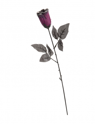 Rosa nera e viola con brillantini